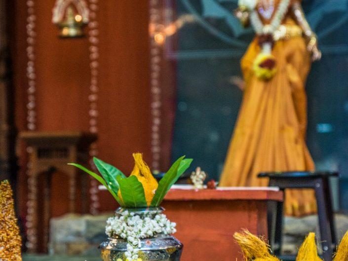 Indian Wedding Ceremony Performance